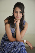 Khenisha Chandran at Jaganatakam press meet-thumbnail-17