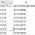 Como guardar un archivo *.txt o Layout desde Excel.