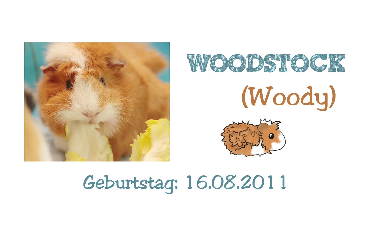 http://wutzdoc.blogspot.de/2013/08/woodstock.html