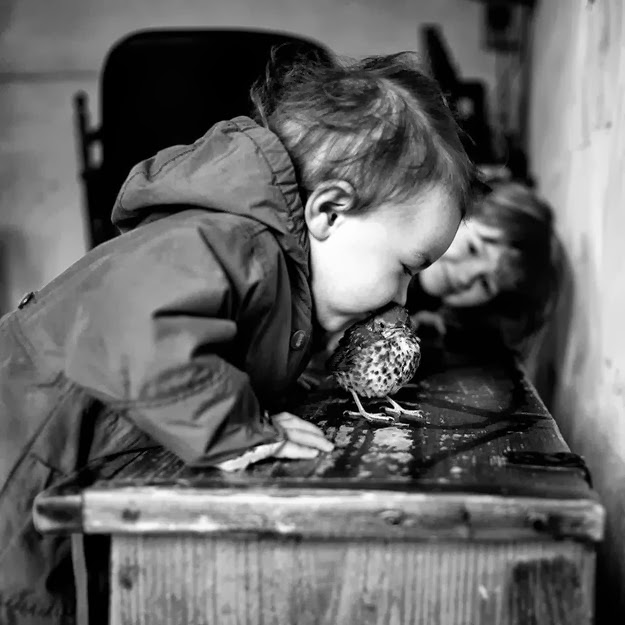 La Famille by Alain Laboile2