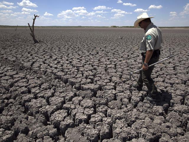 musim kemarau yang panjang tahun ini akibat dari badai elnino