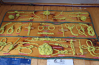 Board of knots