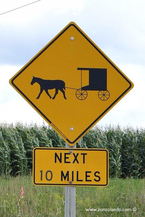 Chi sono e come vivono gli amish. Dove vivono e cosa fanno - Amish FAQ