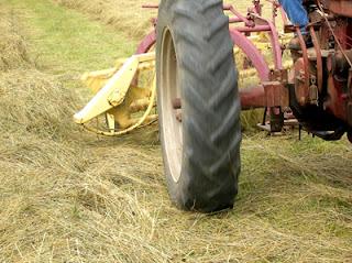 raking hayfield 5