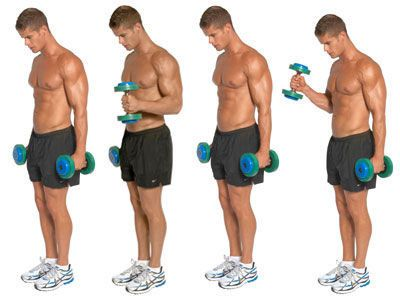 how to train your biceps and triceps at home