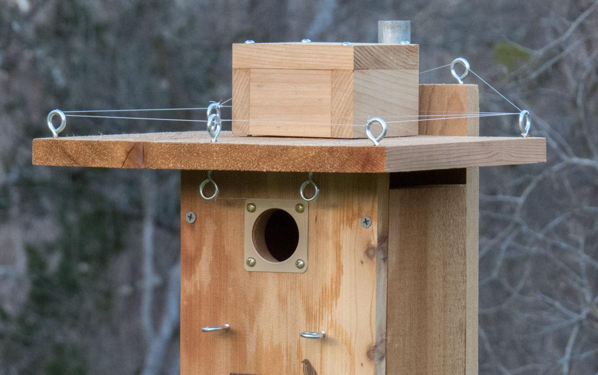 Sparrow Resistant Bluebird House Plans House Sparrow