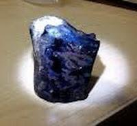 6 Ciri Black Opal Yang Tidak Bisa Keluar Kembang Jarong