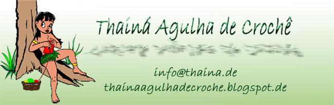 Thainá Agulha de Crochê