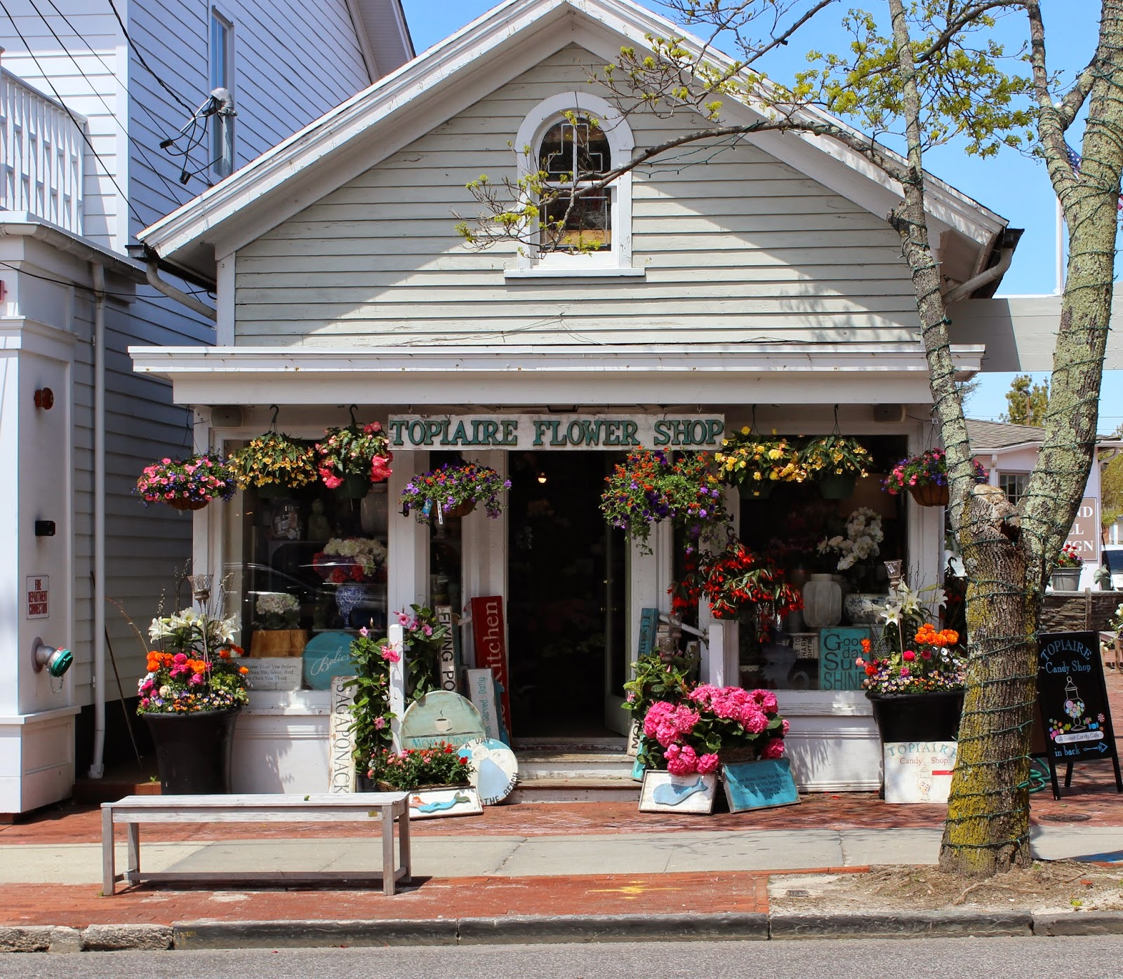 Painting The Hamptons Topiaire Flower Shop
