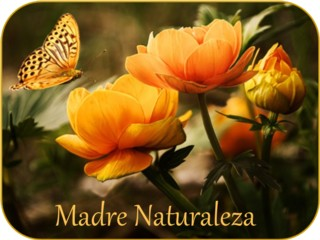 MADRE NATURALEZA - NUEVA PÁGINA