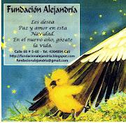 La Fundación Alejandría les desea Paz y amor en ésta navidad! img