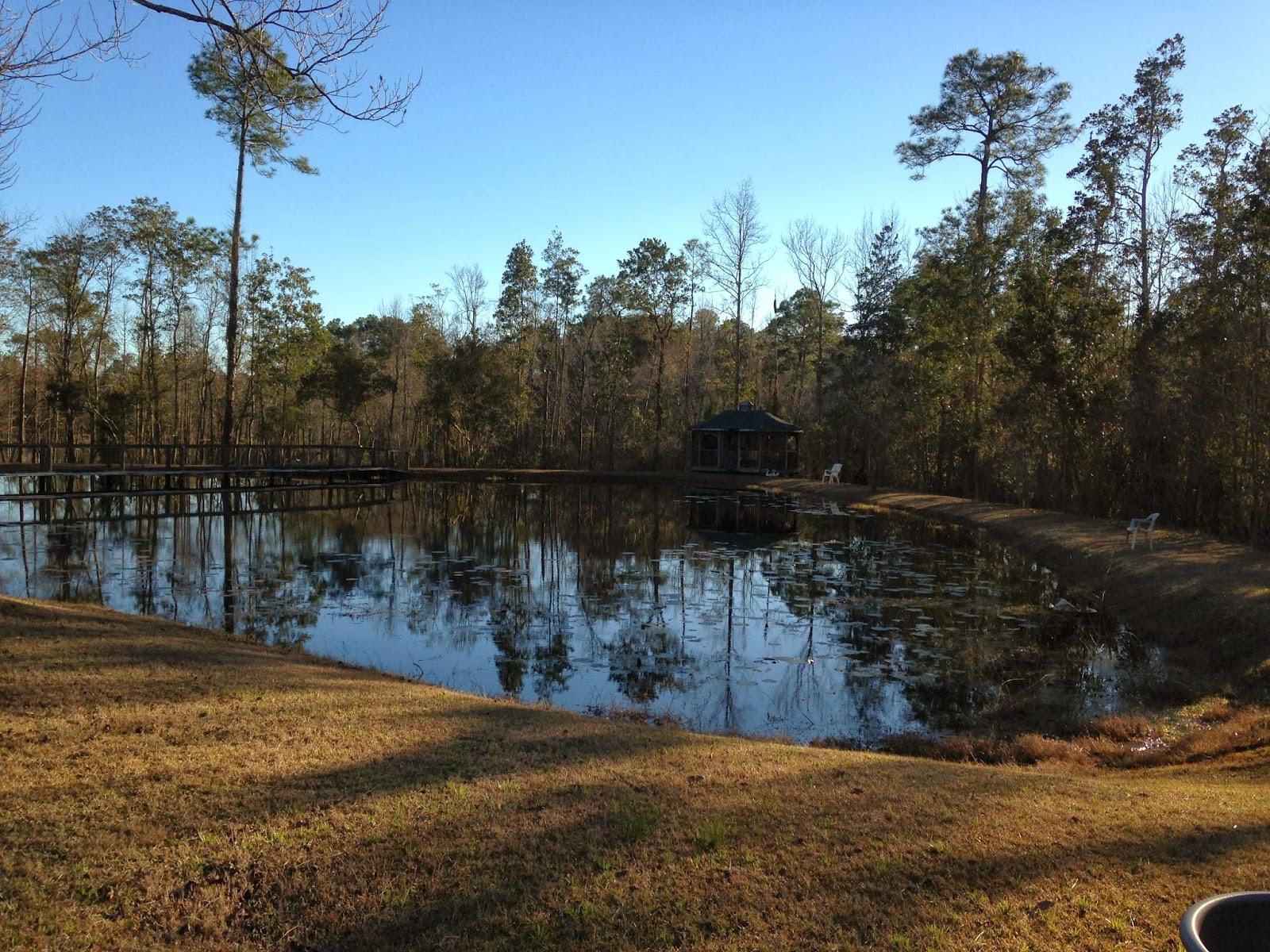 Diane Harmon S Blog On The Pensacola Panhandle And Homes