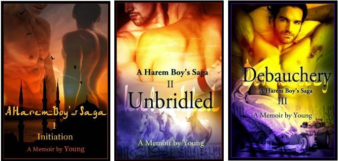 A Harem Boy's Saga