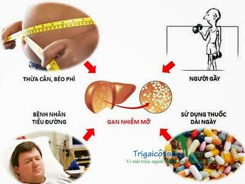 Một số nguyên nhân dẫn đến gan nhiễm mỡ