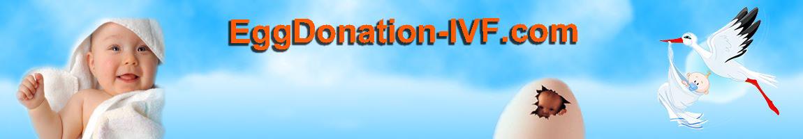 eggdonation-ivf.com