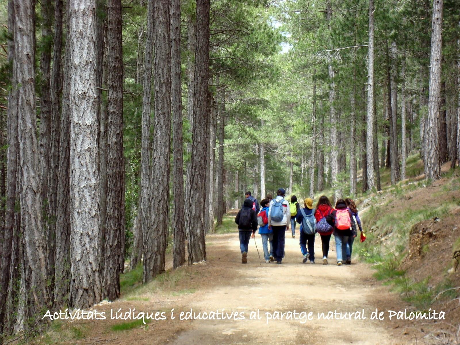 www.laparreta.com