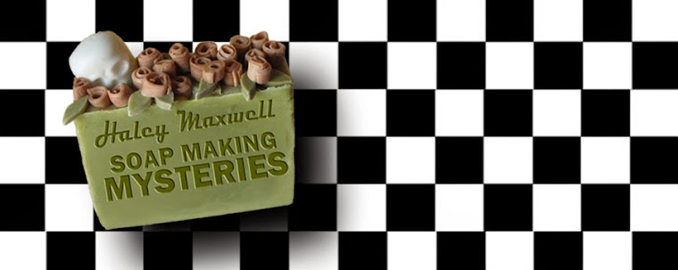 Haley Maxwell Soap Making Mysteries