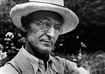 HERMANN HESSE: O GURU DOS HIPPIES - Edgar Welzel