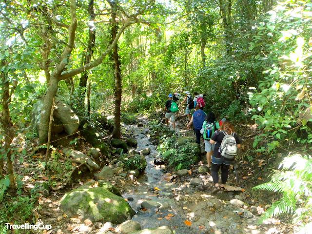 Mt. Pico de Loro trail