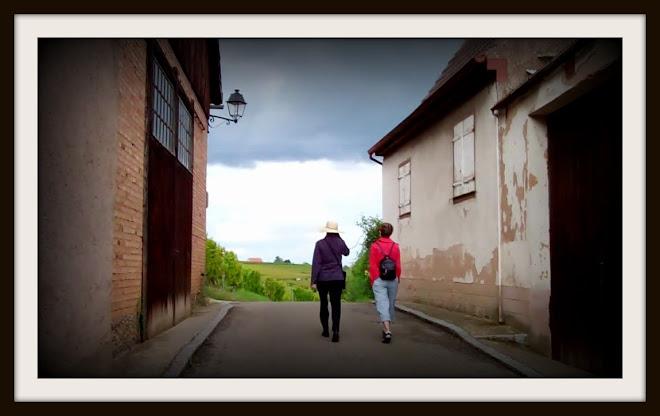 North of Colmar, Alsace