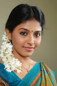 Anjali Beautiful Photos from SVSC-thumbnail-16