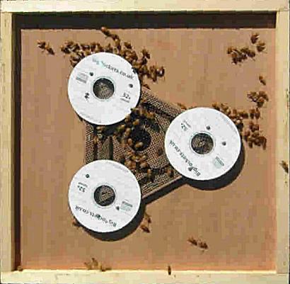 Удалитель для пчел своими руками