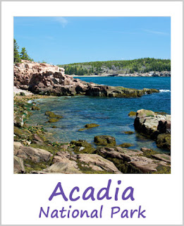 Tickled by the Creative Bug - Acadia National Park: Link to blog post