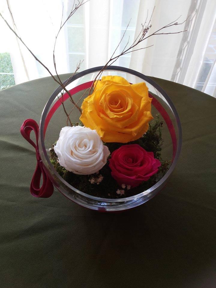 Rosas Naturales Preservadas Amarillas, Blancas y Fucsia ¡Duran 4 Años! Santa Ana, El Salvador