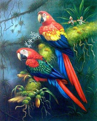 pinturas-guacamayas