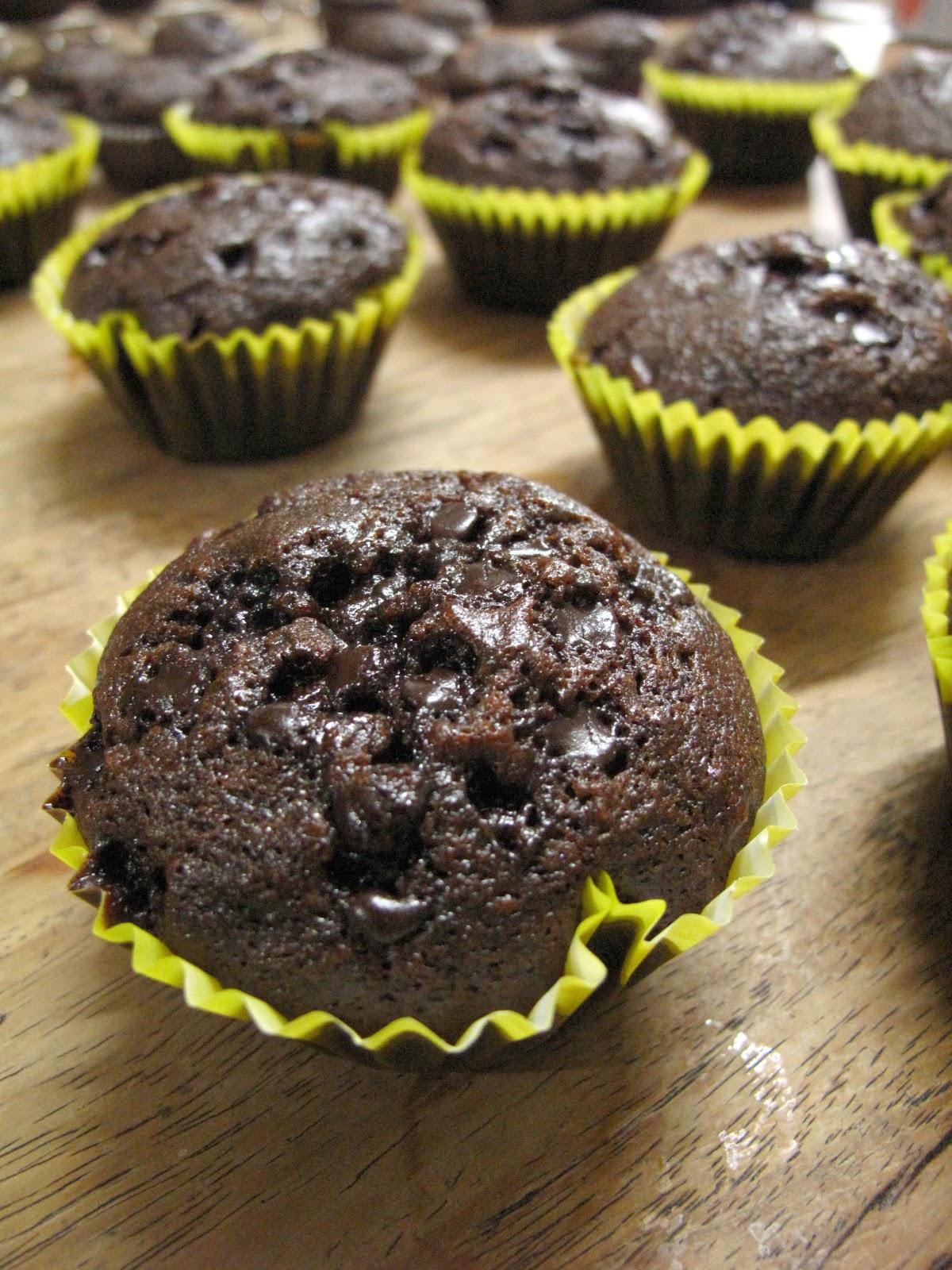 Joy Of Baking Chocolate Cupcakes