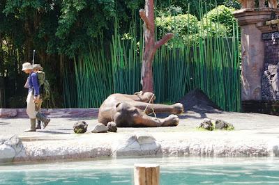 Pembantaian gajah oleh oknum (Ilustrasi)