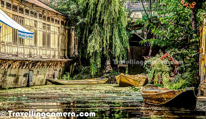 a pure photo journey from dal lake  shrinagar  jammu
