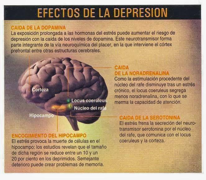 Hablemos de salud consejos para combatir la depresi n en - Consejos para superar la depresion ...