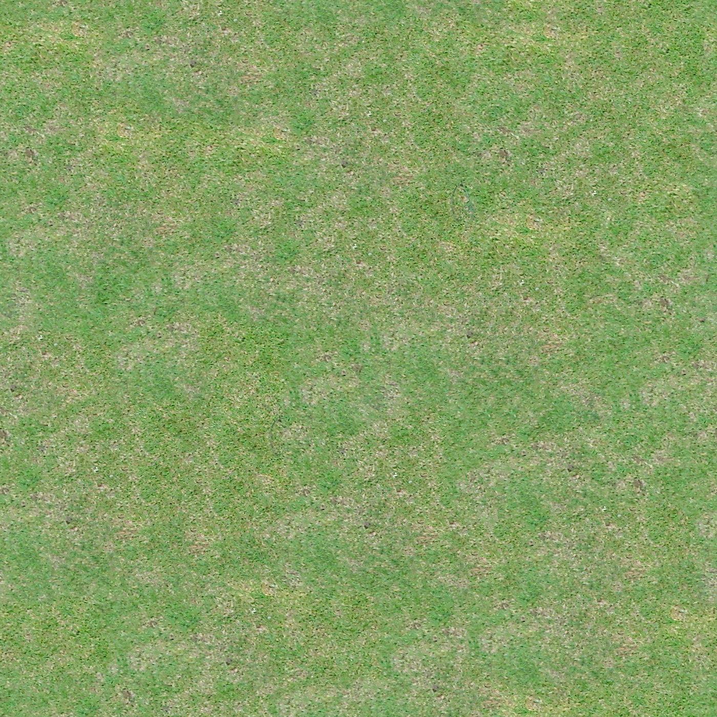 Swtexture Free Architectural Textures Seamless Grass