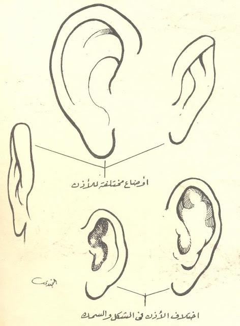 كيفية رسم الأذن