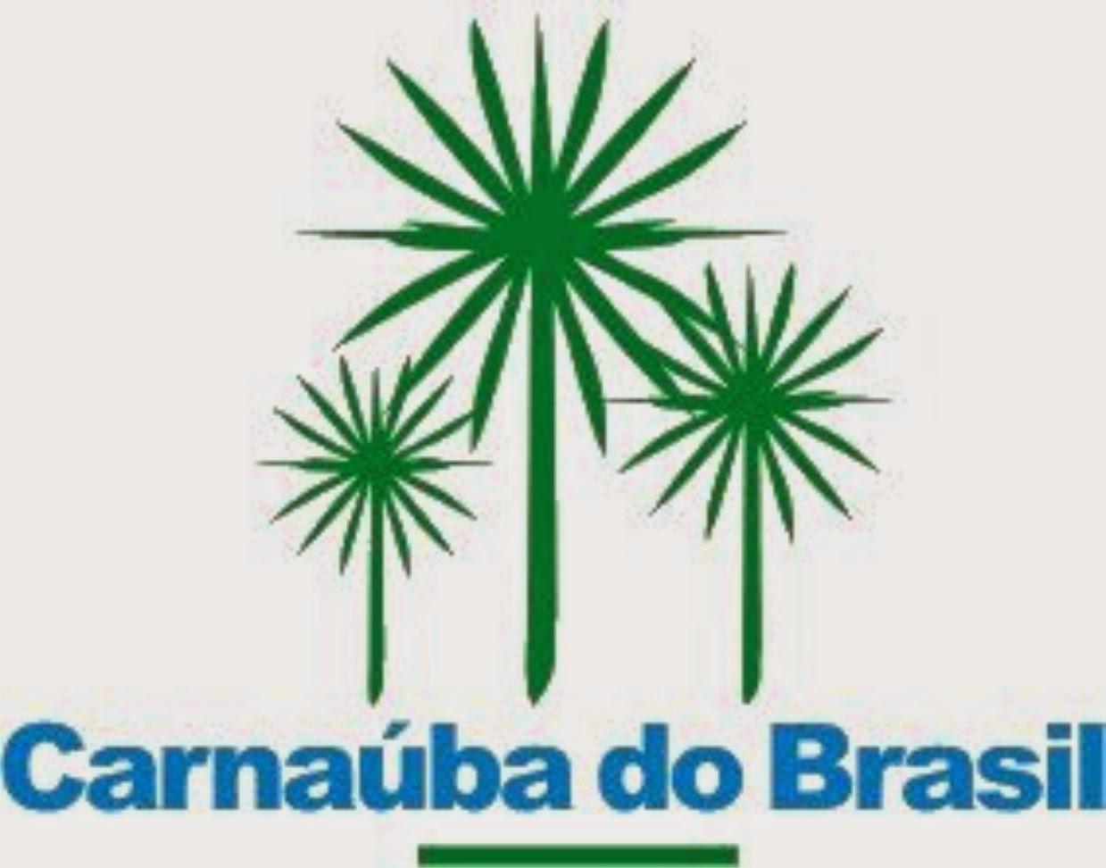 Carnaúba do Brasil