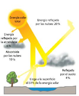 Quot El Impacto De La Radiacion Solar En Los Ecosistemas