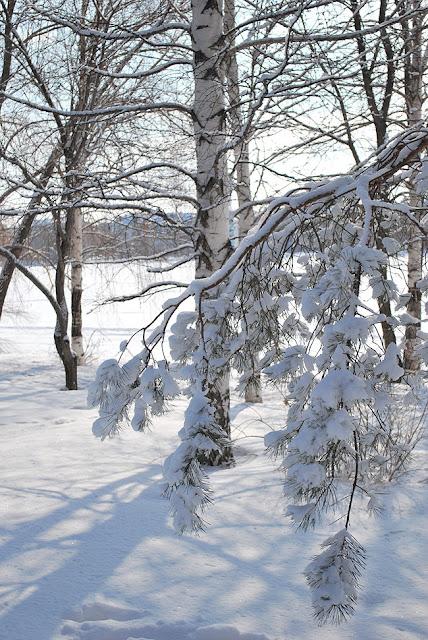 Лысьва. Снежный детский парк.