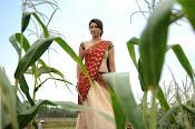 Tanvi vyas Latest Photos in Half Saree-thumbnail-13