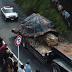 Giant Fukushima Mutant Turtle Finally Captured By Japanese Military