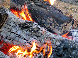 burning firewood fireplace safety