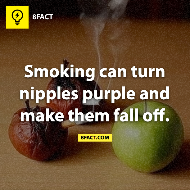 Random facts : - Smoking can turn nipples purple and make them fall off.