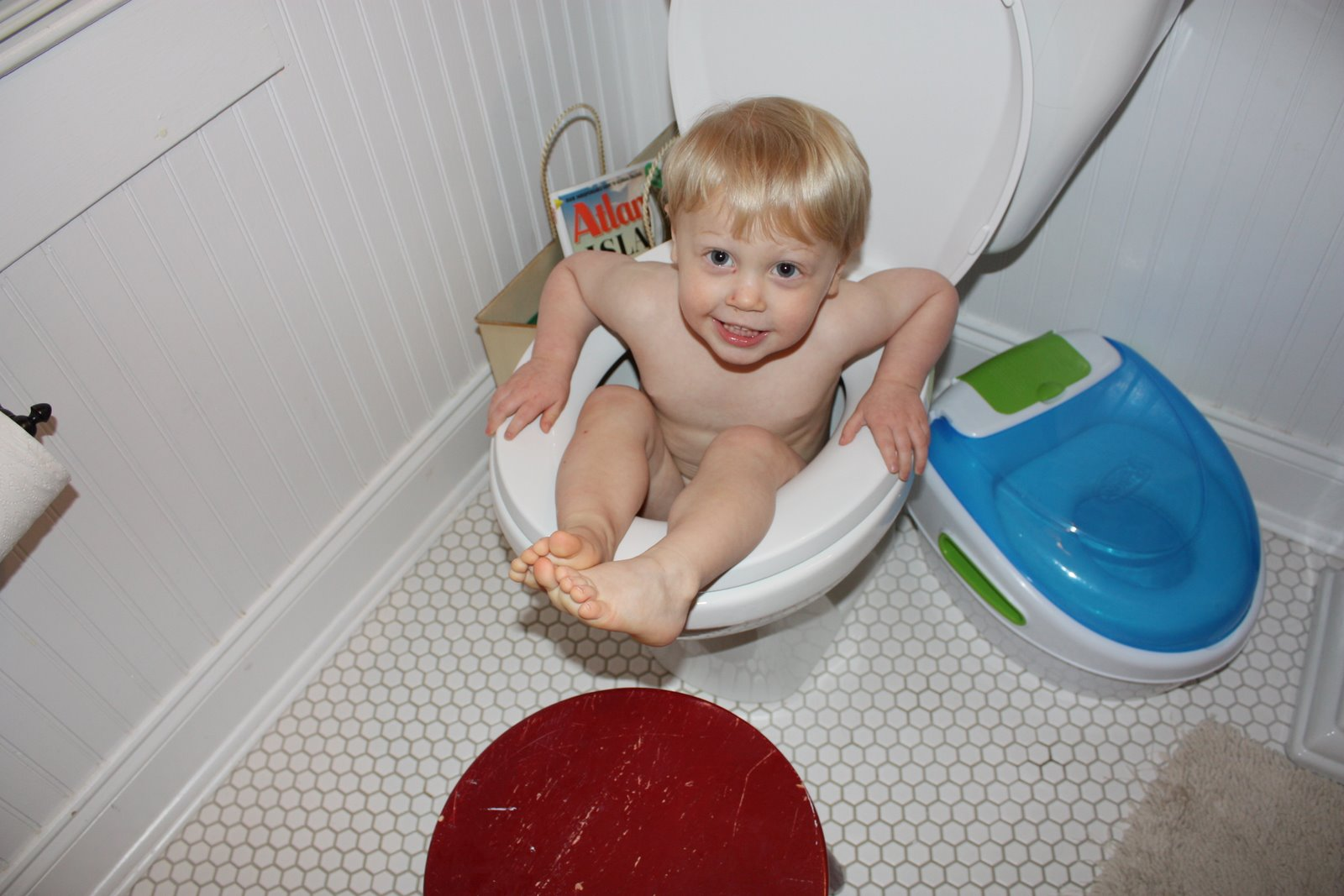 Toilet Training Chart Template What Age Potty Train Boy