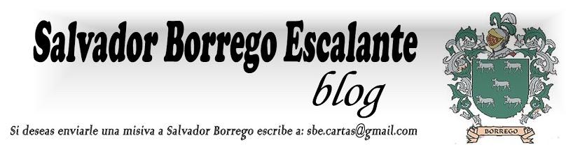 Salvador Borrego E. : El Coloso de América