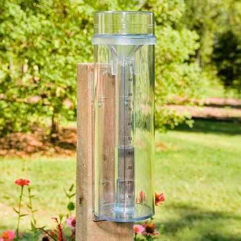 Los recursos renovables con doroti experimentos - Como fabricar un pluviometro ...