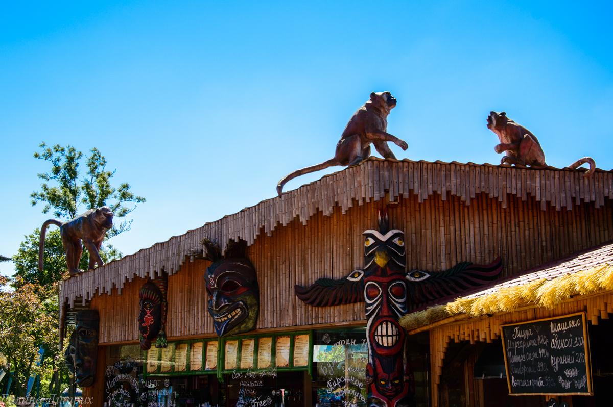 Животные на Диво-острове фото
