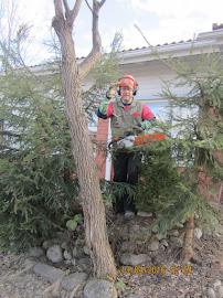 Puutarhuri talonmies apumieheksenne pihatöissä pihapalveluita tarvitessanne