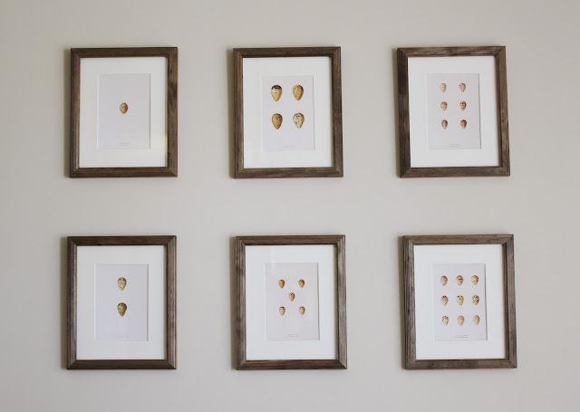 Egg Prints   www.adorbymelissa.com