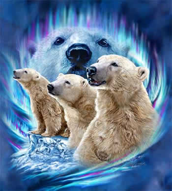imágenes de osos lindos