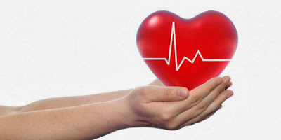 4 super food to protect heart health